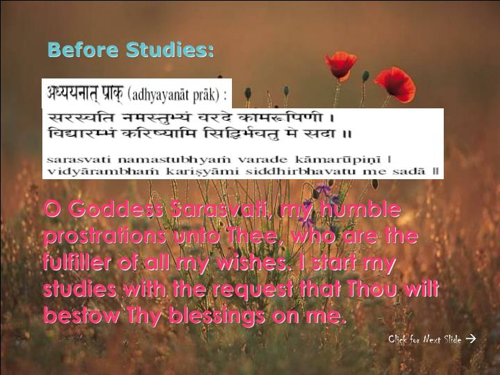 Before Studies: