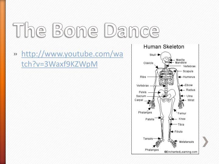 The Bone Dance