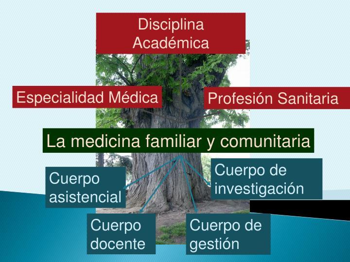 Disciplina Académica