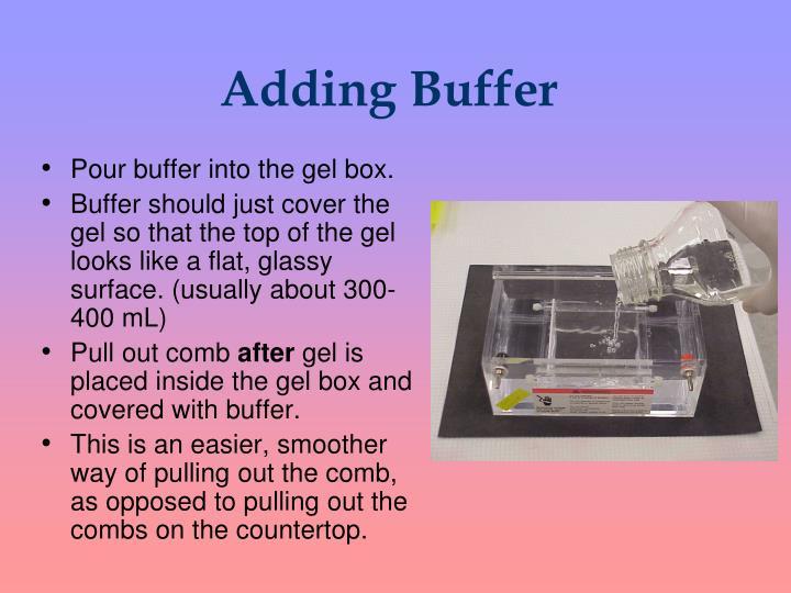 Adding Buffer