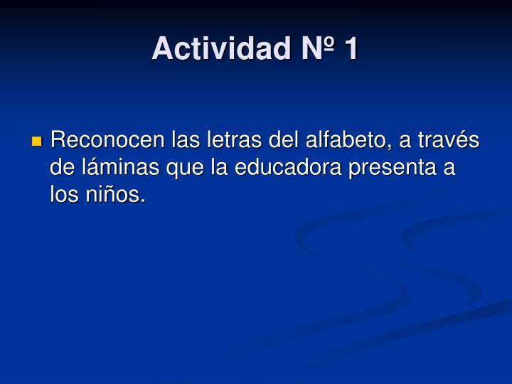 Actividad Nº 1