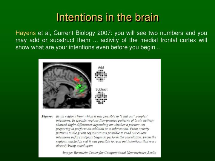 Intentions in the brain