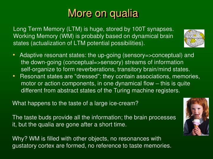 More on qualia