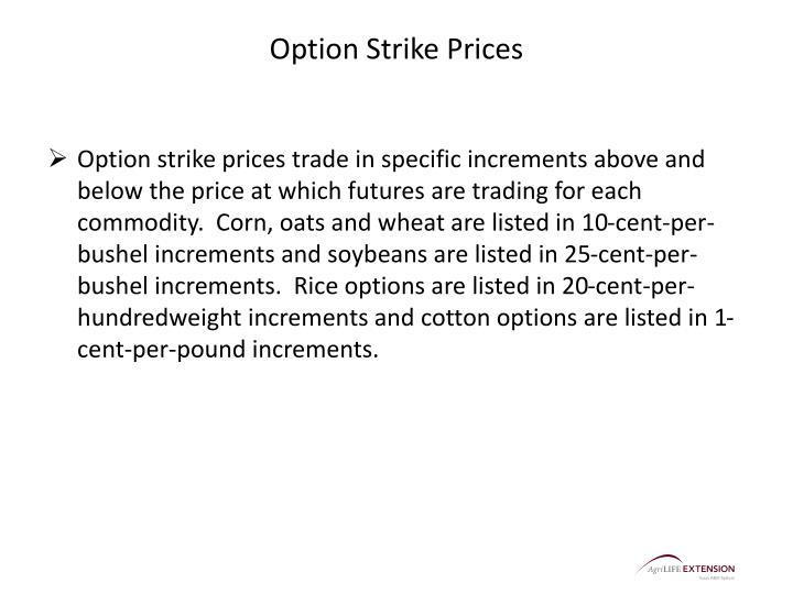 Option Strike Prices