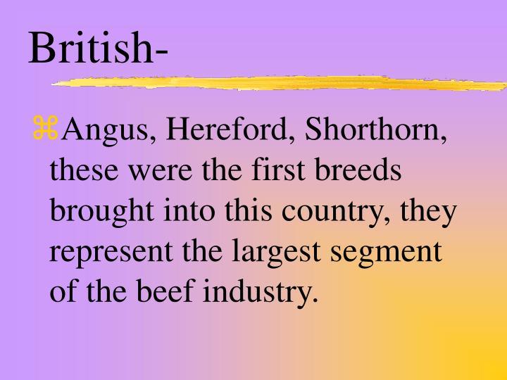 British-