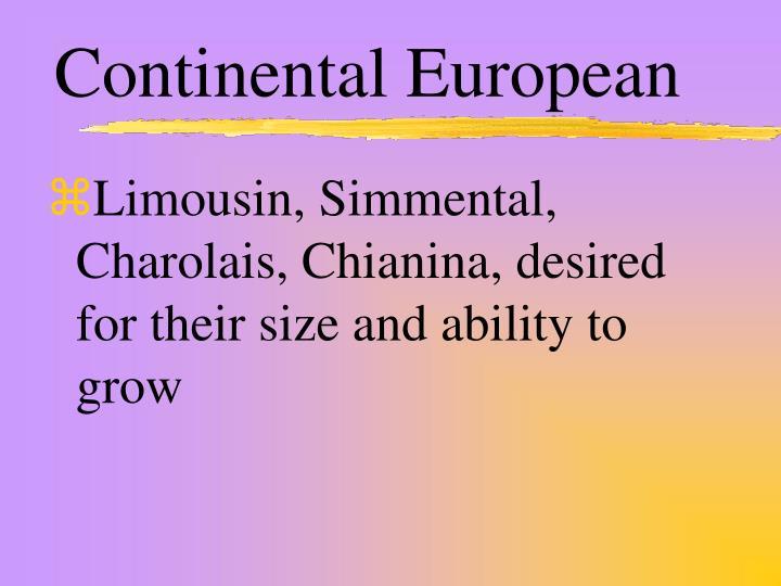Continental European