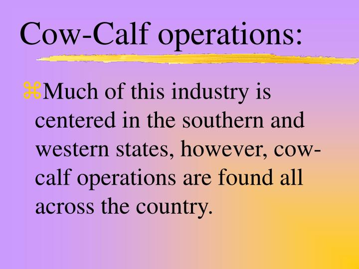 Cow-Calf operations: