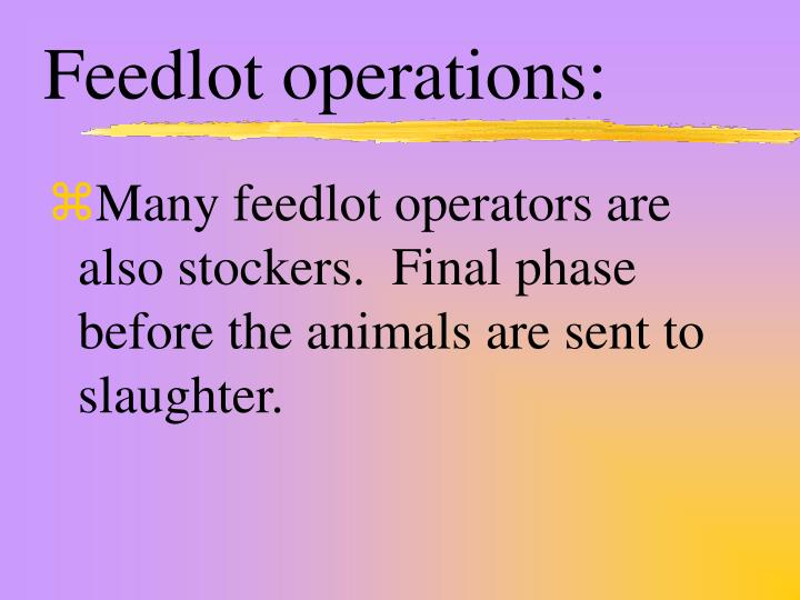 Feedlot operations: