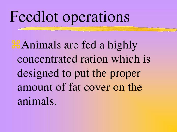 Feedlot operations