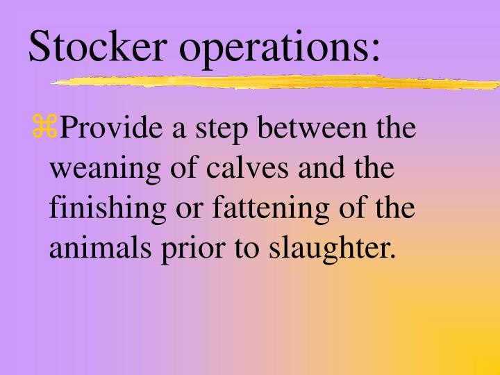 Stocker operations: