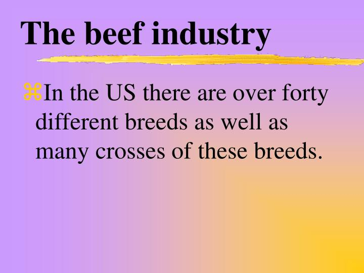 The beef industry