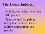 the horse industry7