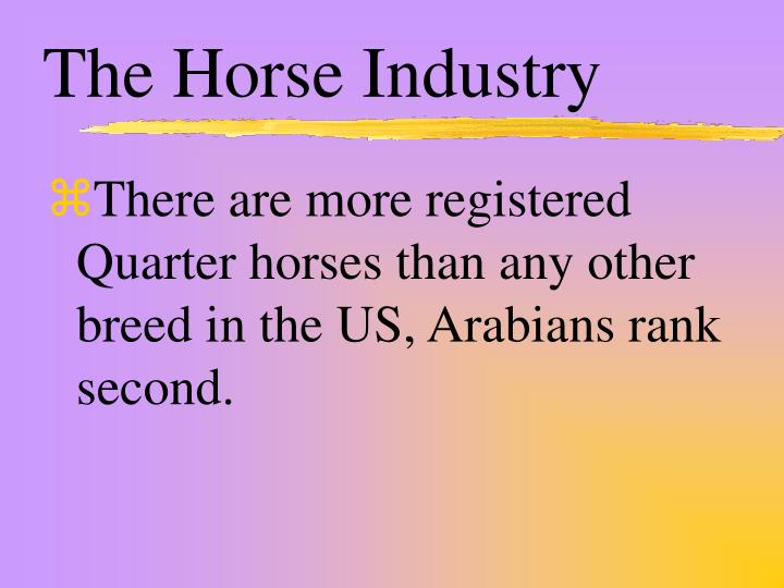 The Horse Industry