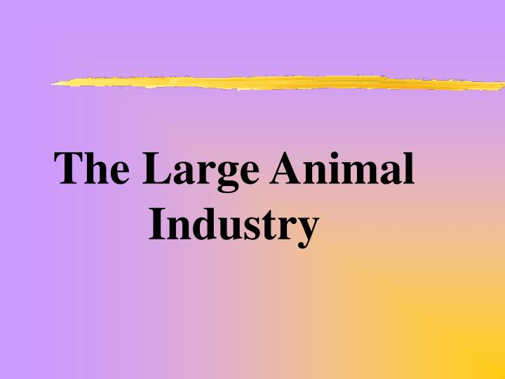 The Large Animal Industry