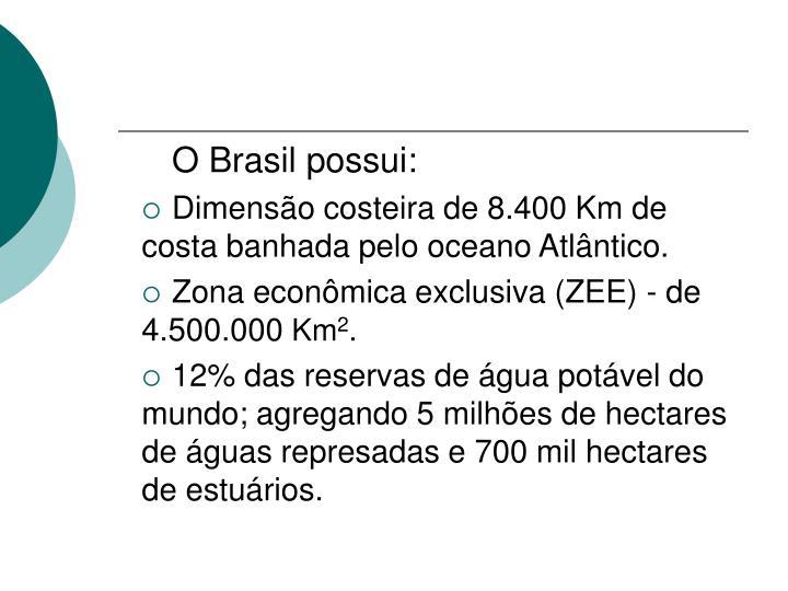 O Brasil possui: