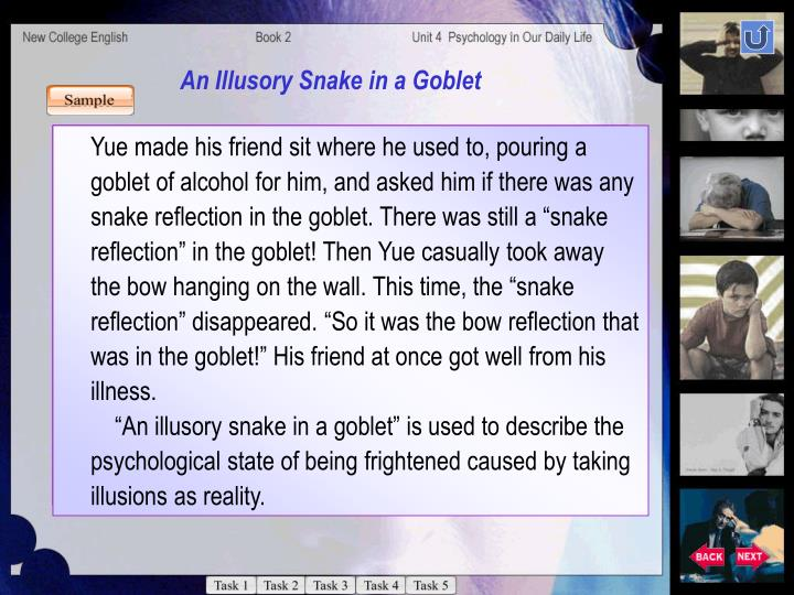 An Illusory Snake in a Goblet