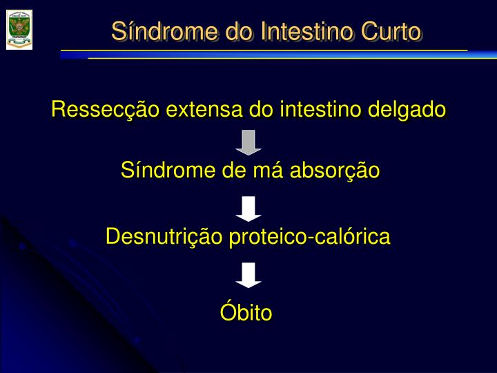 Síndrome do Intestino Curto