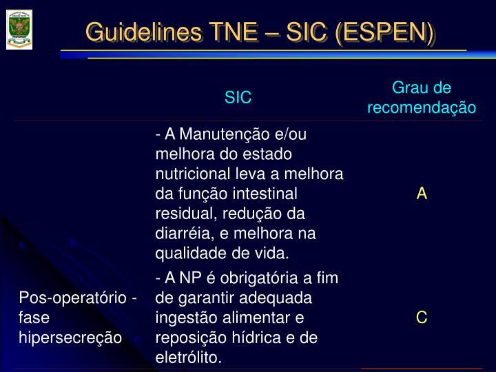 Guidelines TNE – SIC (ESPEN)