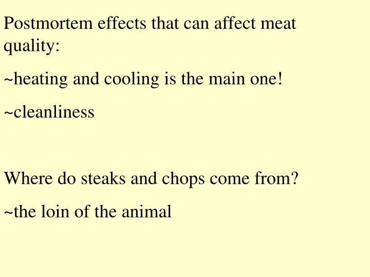 Postmortem effects that can affect meat quality: