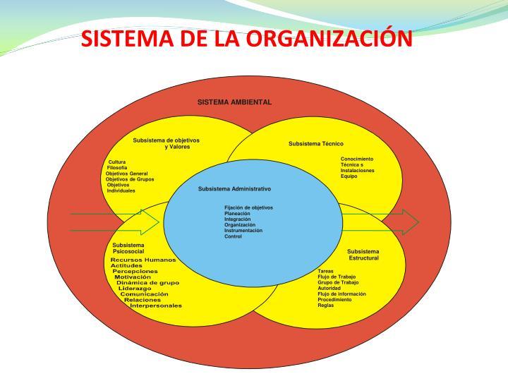 SISTEMA DE LA ORGANIZACIÓN