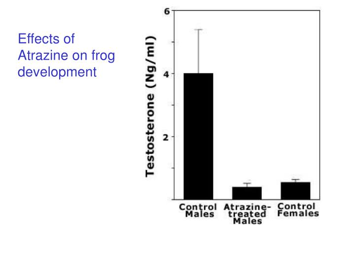 Effects of Atrazine on frog development
