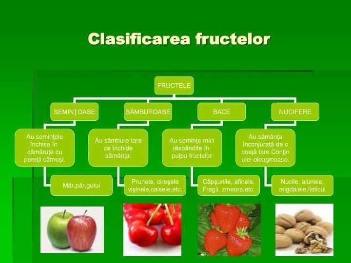 Clasificarea fructelor