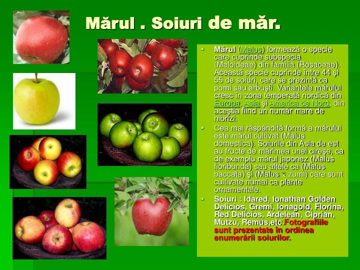 Mărul .