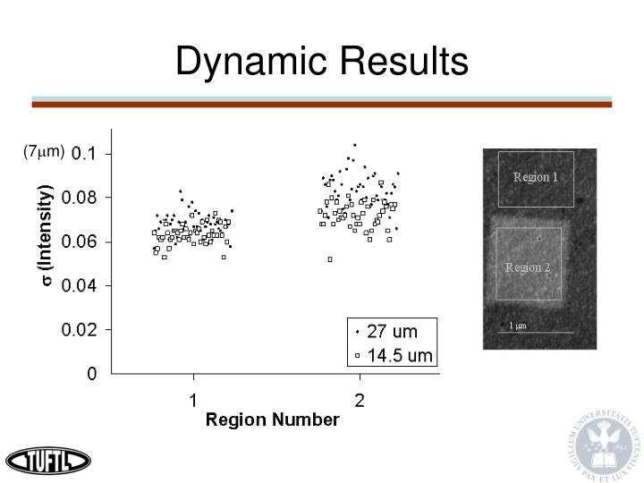 Dynamic Results
