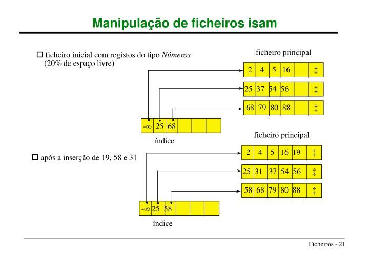Manipulação de ficheiros isam