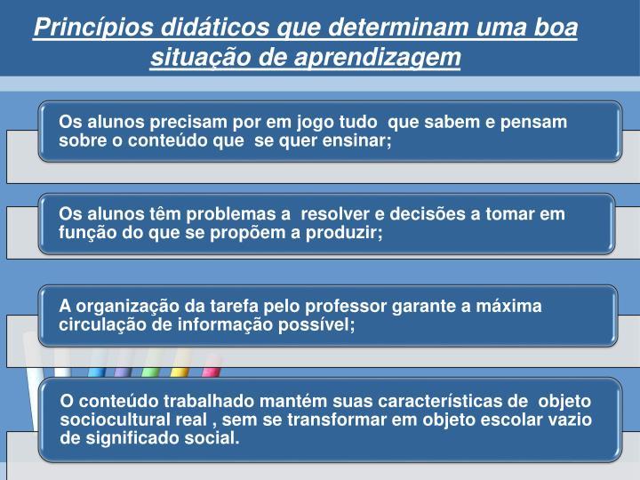 Princípios didáticos que determinam uma boa situação de aprendizagem