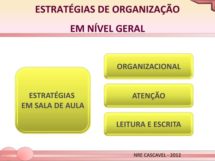 ESTRATÉGIAS DE ORGANIZAÇÃO