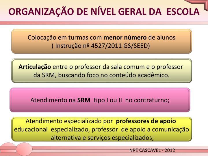 ORGANIZAÇÃO DE NÍVEL GERAL DA  ESCOLA