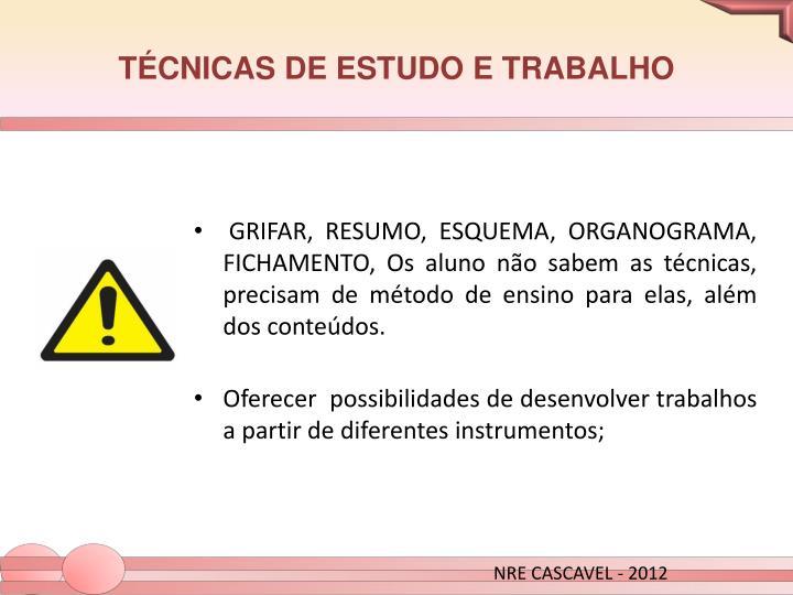 TÉCNICAS DE ESTUDO E TRABALHO