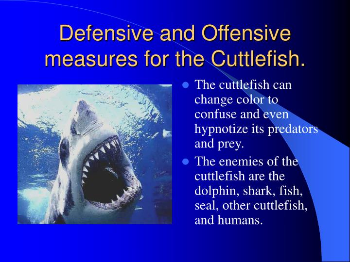 Defensive and Offensive measures for the Cuttlefish.