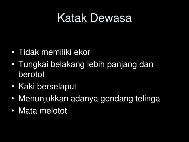 Katak Dewasa