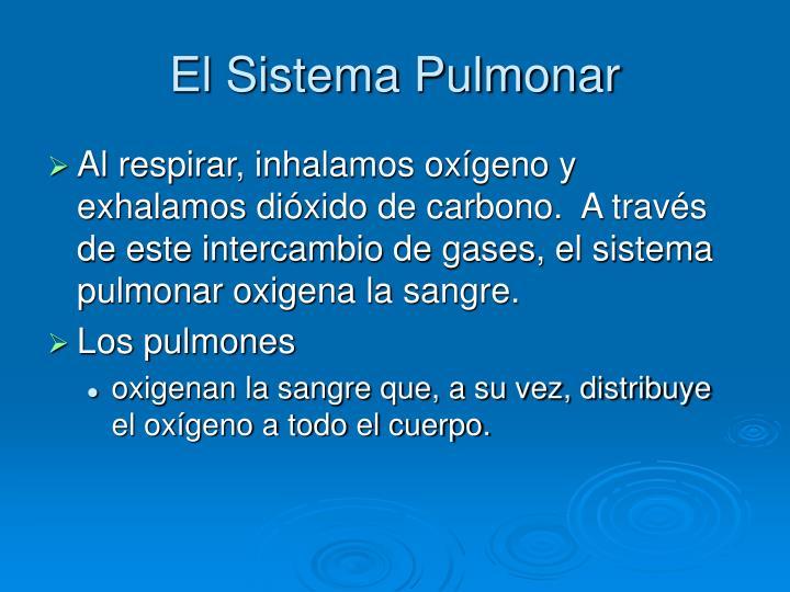El Sistema Pulmonar