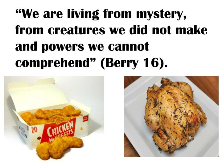 """We are living from mystery, from creatures we did not make and powers we cannot comprehend"" (Berry 16)."