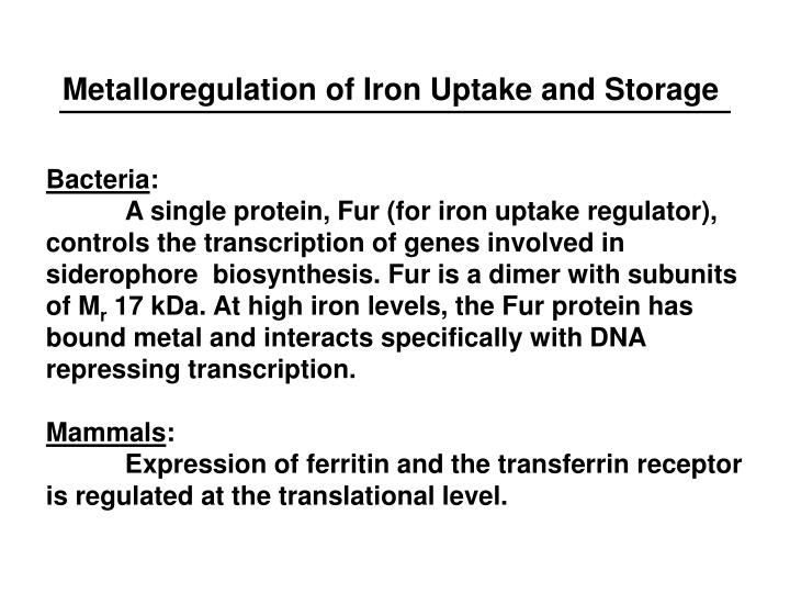 Metalloregulation of Iron Uptake and Storage