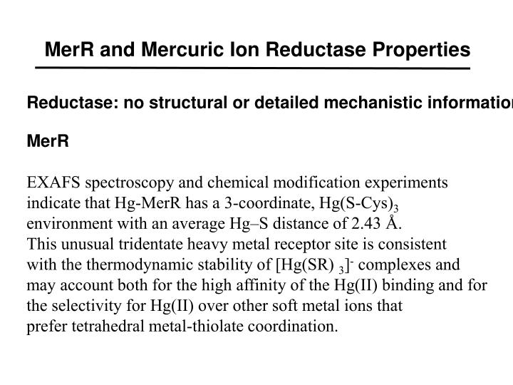MerR and Mercuric Ion Reductase Properties