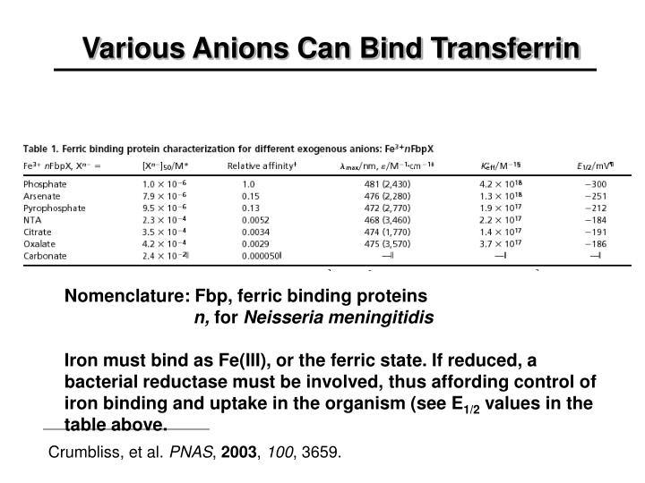 Various Anions Can Bind Transferrin