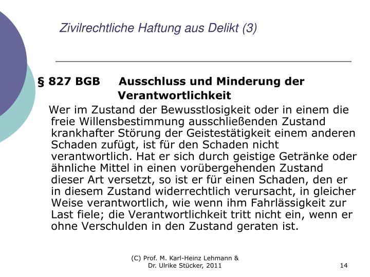 Zivilrechtliche Haftung aus Delikt (3)