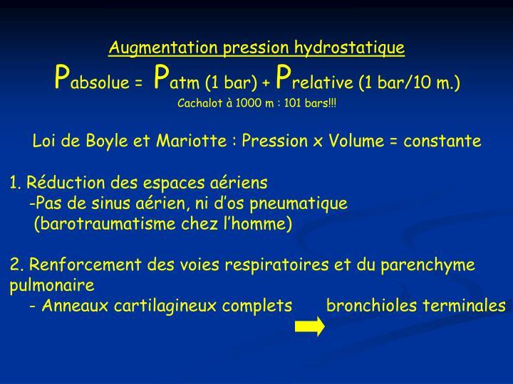 Augmentation pression hydrostatique