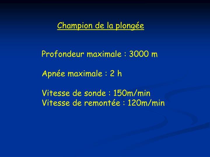 Champion de la plongée