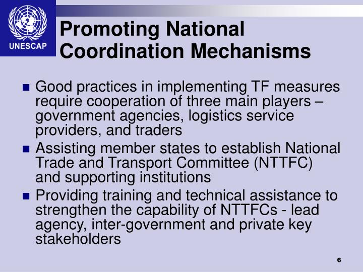 Promoting National Coordination Mechanisms
