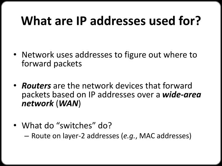 What are IP addresses used for?