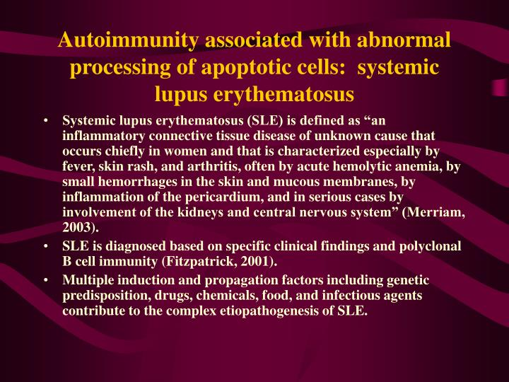 Autoimmunity associated with abnormal processing of apoptotic cells:  systemic lupus erythematosus
