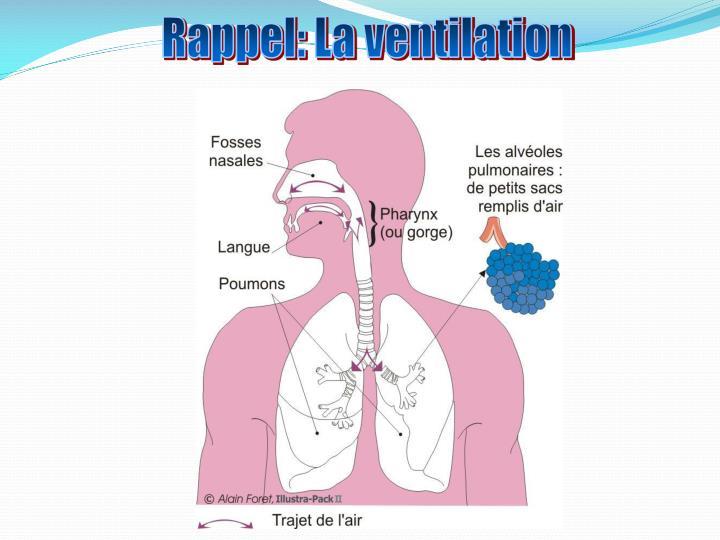 Rappel: La ventilation
