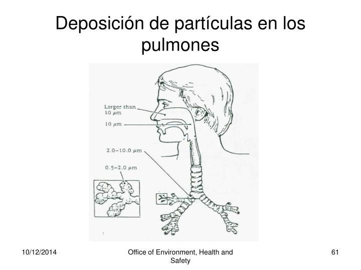 Deposición de partículas en los pulmones