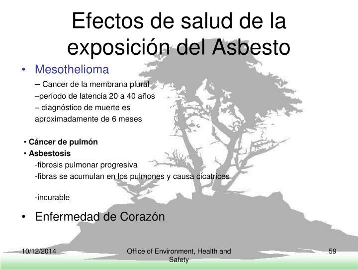 Efectos de salud de la exposición del Asbesto