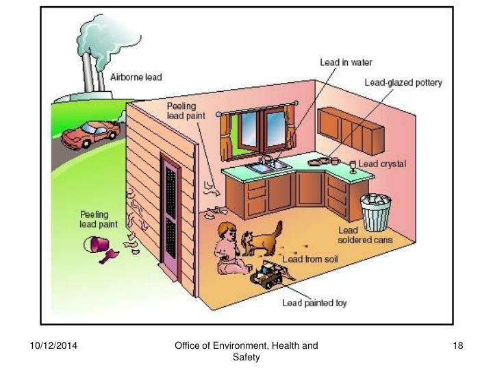 Office of Environment, Health and Safety